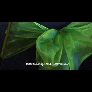 BRIGHT GREEN ORGANZA SASHES